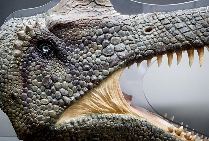 3D프린터로 제작된 공룡 피규어