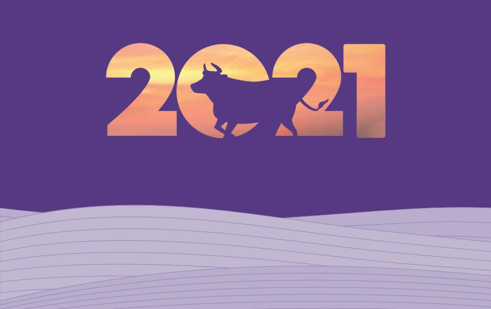 2021년 신축년 소띠 일러스트