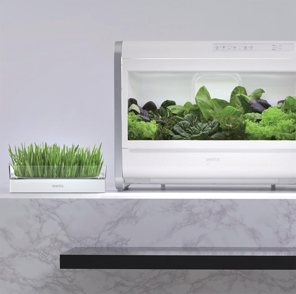 새싹재배기와 식물재배기